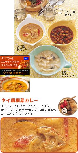 DHCタイ風根菜カレー
